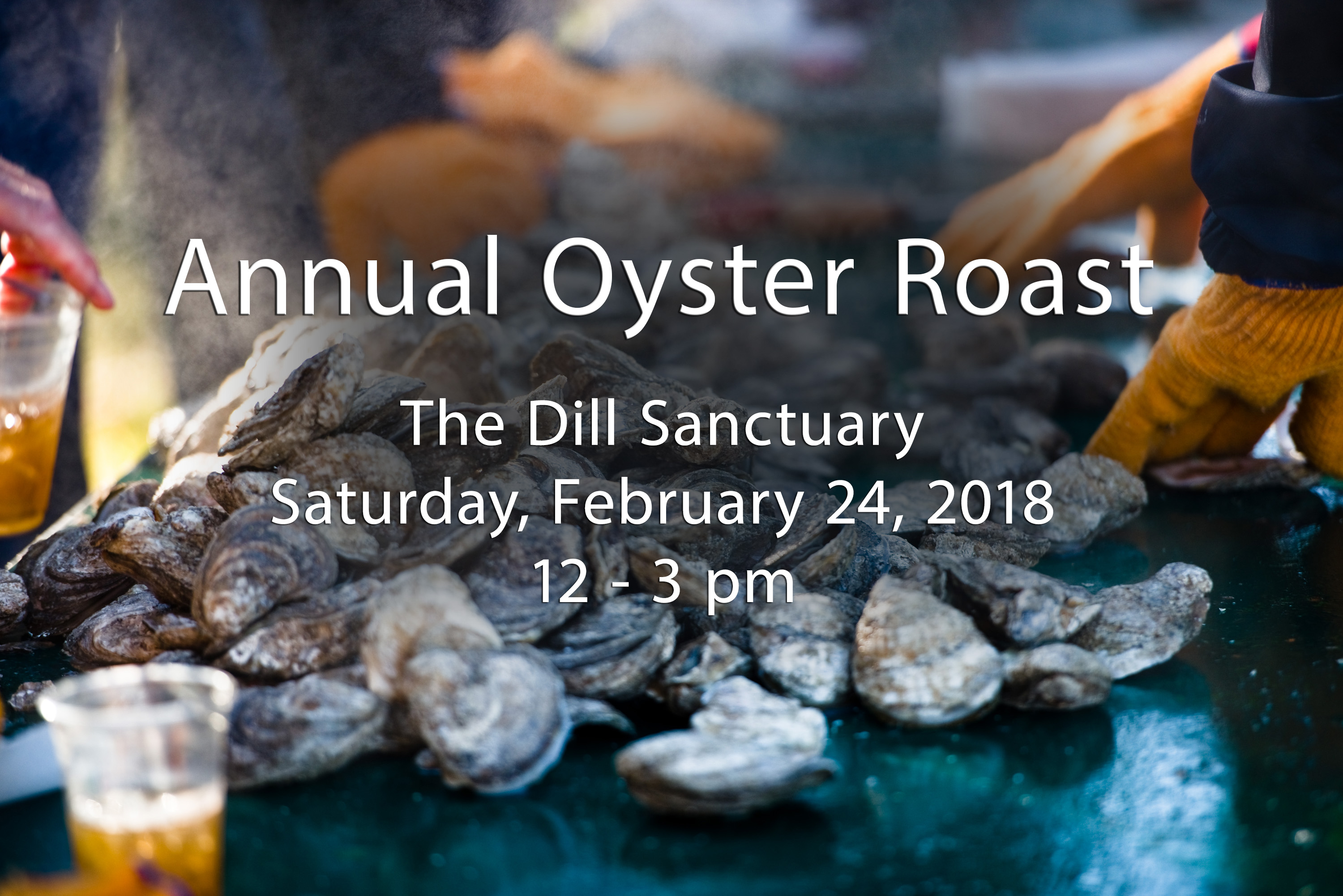 2018 Annual Oyster Roast at The Dill Sanctuary