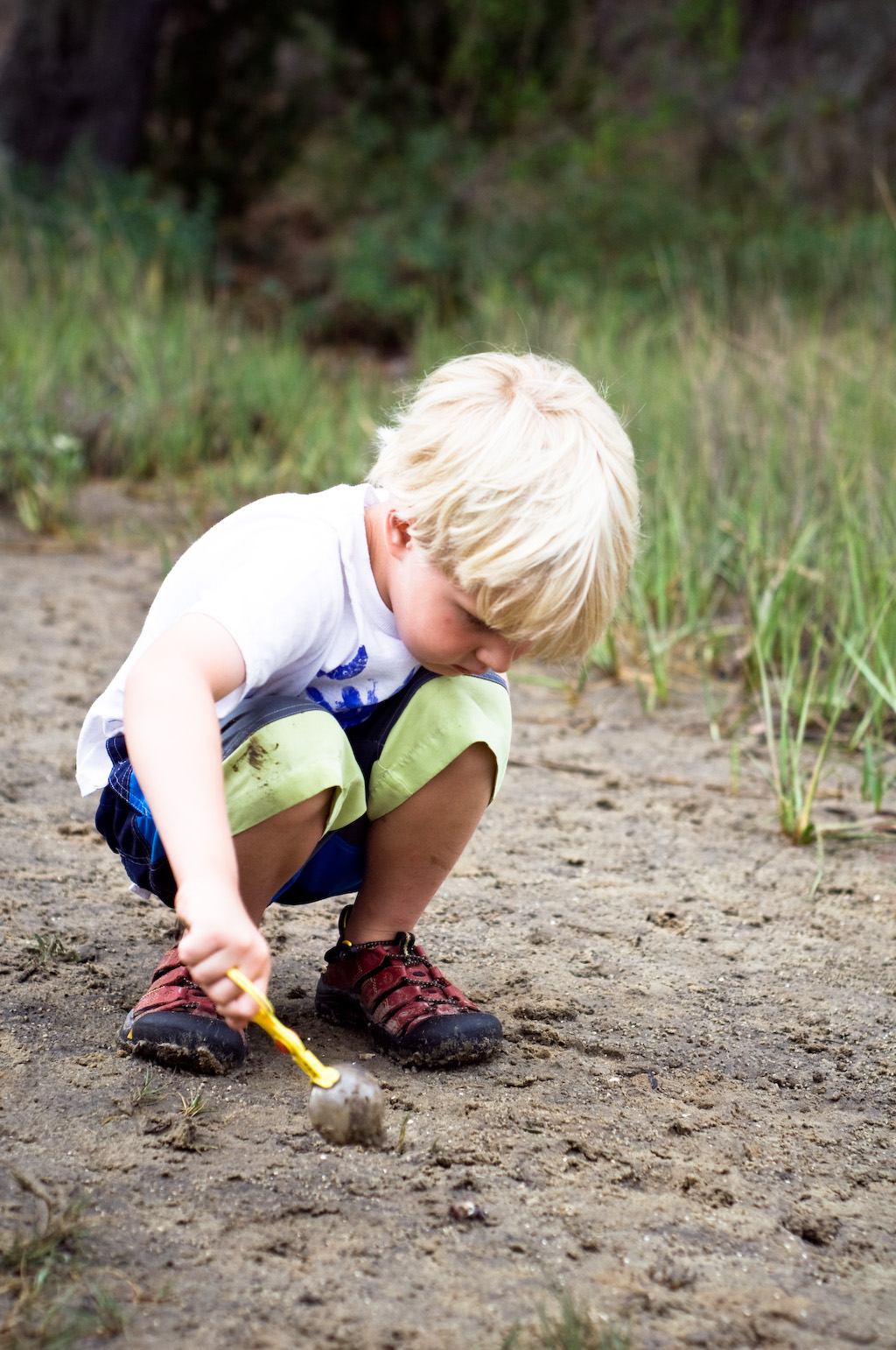 Discovery Day: Nature Hunt